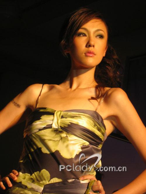 netiger上海高级时尚沙龙高清图片